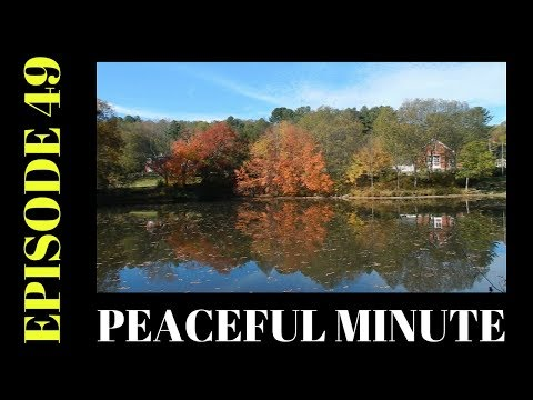 Peaceful Minute ~ Episode 49 ~ Foliage at River Bend Farm ~ Blackstone River and Canal