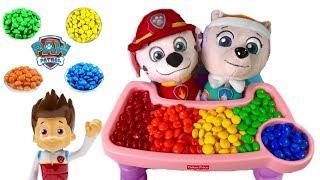 Paw Patrol Marshall & Everest Brush Their Teeth   Fizzy Fun Toys