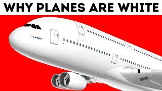 Why Airplanes Are Almost Always White
