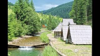 Отдых и путешествие в карпатах летом. Украина