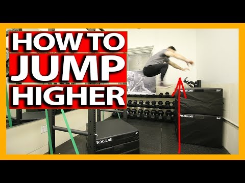 VERTICAL JUMP TRAINING WORKOUT (Full Follow Along) How To Increase Your Vertical Jump - DAY 2