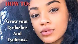 How To Grow Your Eyelashes Eyebrows Jasmeannnn