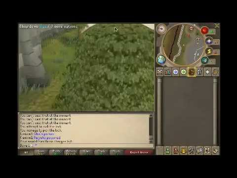 Runescape - Bave_L Getting Monkey Madness (MM)