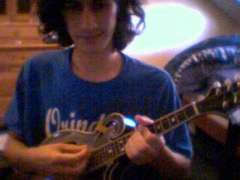 Epiphone mm-50 f mandolin review
