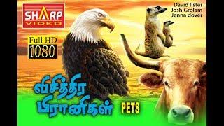 தமிழ் dubbed சூப்பர் ஹிட் படம் / Pets விசித்திர பிரணிகள்/