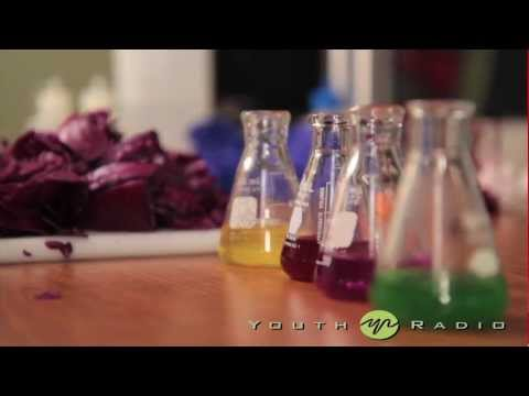 Brains and Beakers: The Color of Green Chemistry