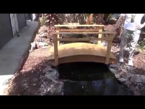 Pond stream and bridge