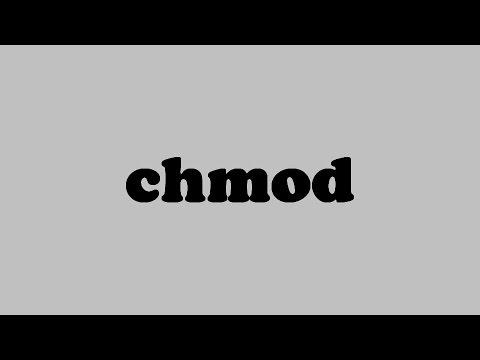 8-Commande Linux Chmod #darija
