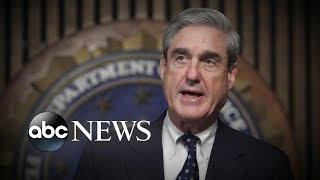 New signs special counsel