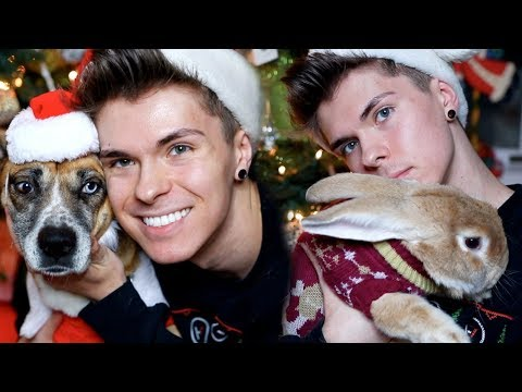 Dressing Up My Dogs & Giant Rabbit! (HOLIDAY EDITION)