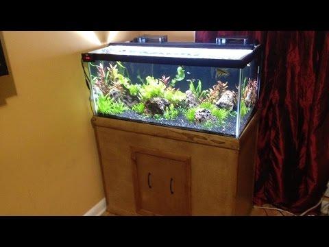 DIY  Stand  for a 40 gallon breeder Tank