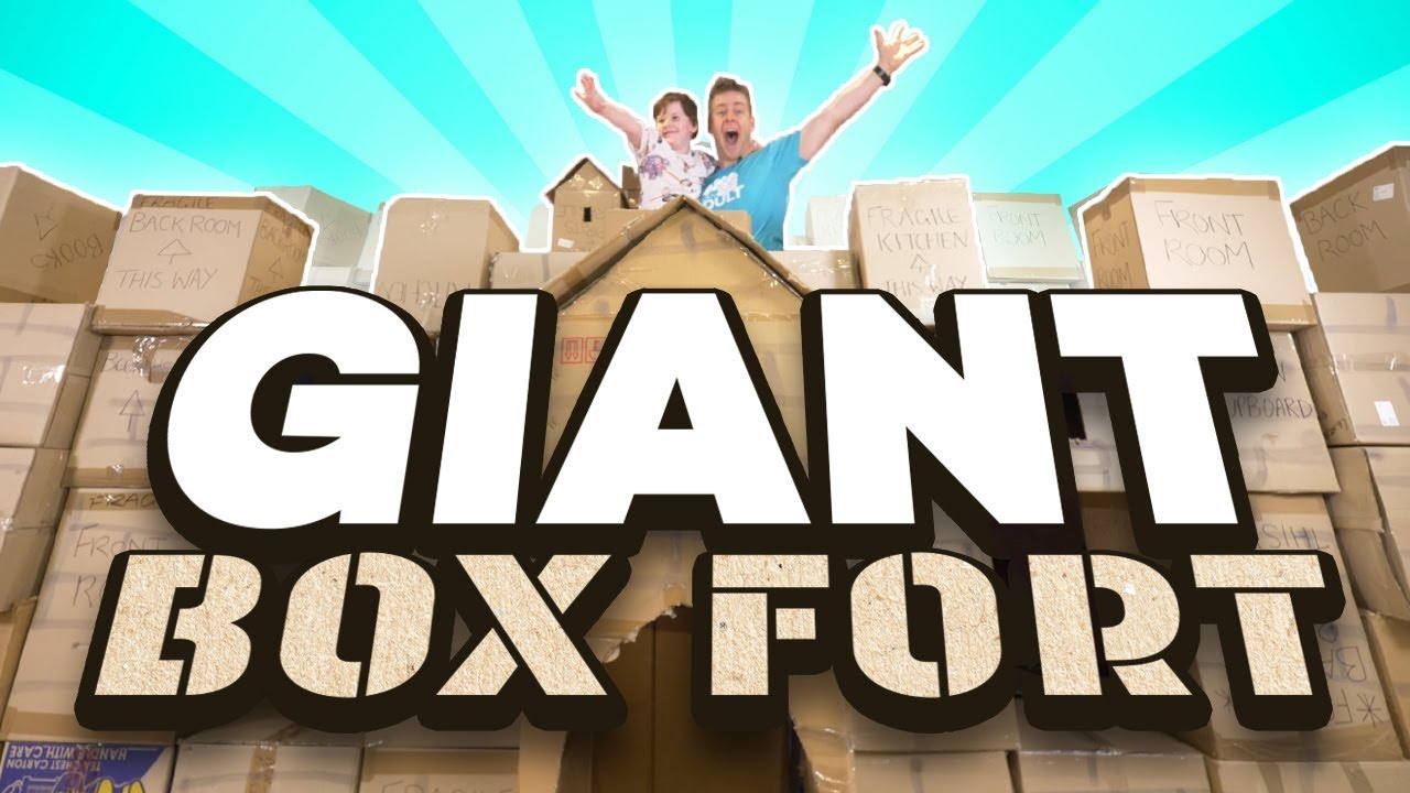 I Made a GIANT BOX FORT!!