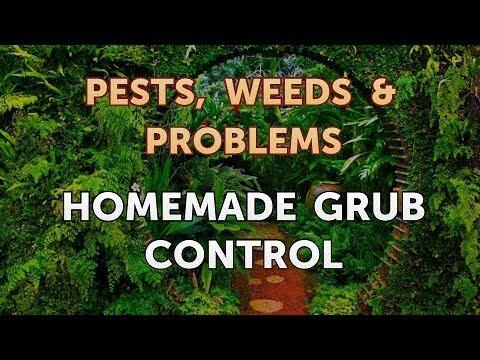 Homemade Grub Control