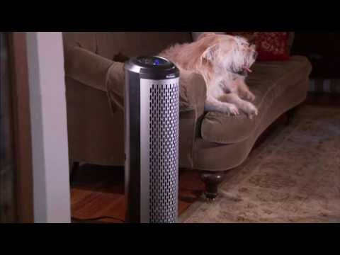 Holmes Air Purifier Tower with aer1 Allergen Filters on QVC