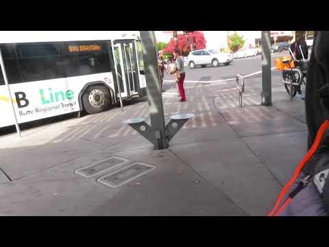 Riding the bus w/ Roger Sarria