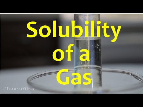 How Temperature Affects the Solubility of Gases - Experiment