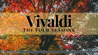 Vivaldi - The Four Seasons (Metamorphose String Orchestra)