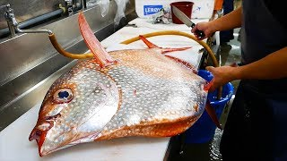 Japanese Street Food - GIANT OPAH SUNFISH Okinawa Japan