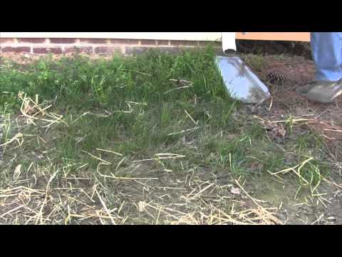 How To Fix Poor Drainage and Protect Foundation