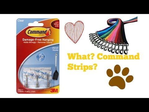 Command Strip Dog Leash And Collar Organizer! DIY