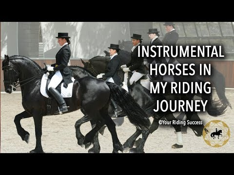Instrumental Horses In My Riding Journey - Weekly Wrap Up 5th June 2018