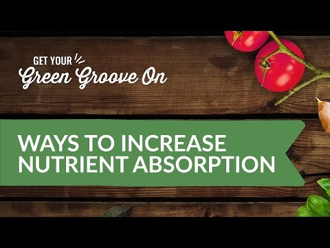 Ways To Increase Absorption