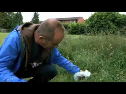 See how we convert dog poo to energy with Kevin McCloud...