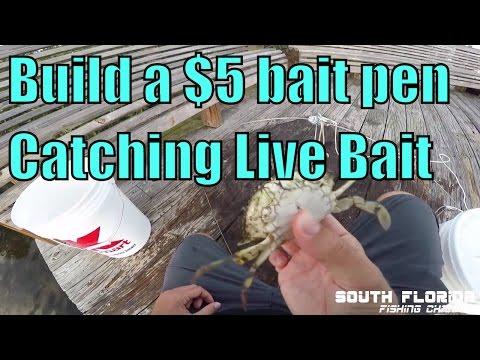 Build your own live bait pen + catching bait pin fish