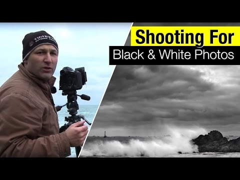 Shooting for black and white photos - A Quick Photo Guide.