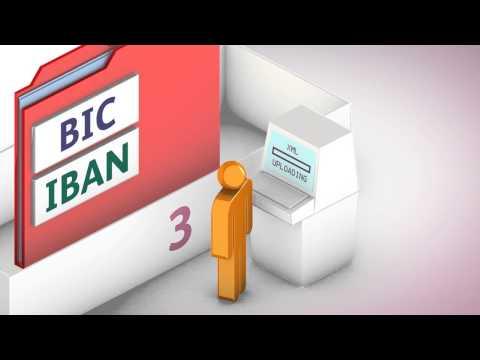 AIB Guide to SEPA Debit Transfers