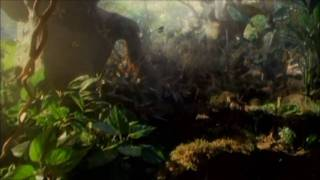 Download Rainforest in Antarctica 100 Million Years in the Future [HD] Video