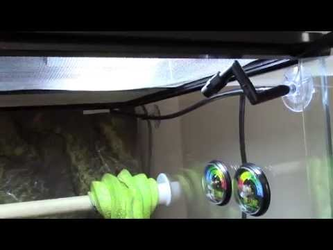 Reptile Misting System Review - Exo Terra Monsoon RS400 Rainfall System