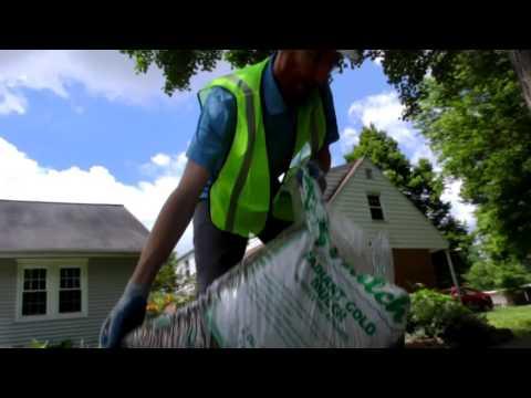 Best Practices - Manual Root Crown Excavation