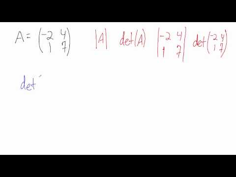 Find the Determinant of a 2x2 Matrix - Example 1
