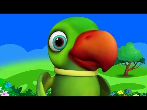 Main Tota Hindi Rhyme   Children Hindi Rhyme   मैं तोता मैं तोता   Kids Channel India   Hindi Rhyme