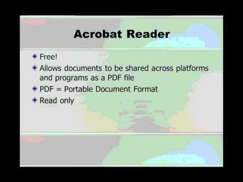 What is Adobe Acrobat?
