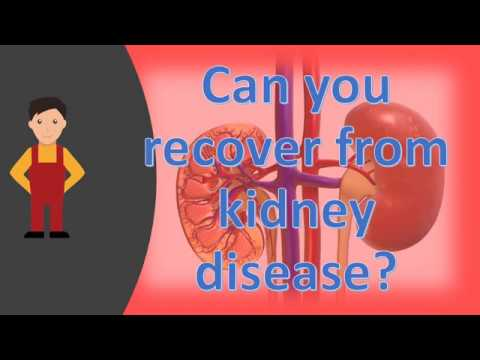 Can you recover from kidney disease ?