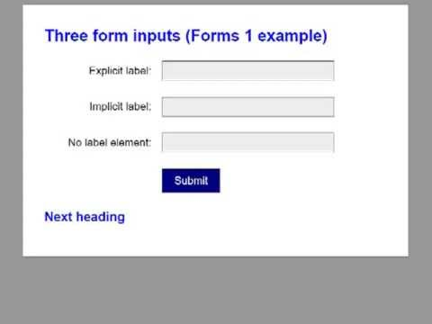 Identifying form inputs using NVDA