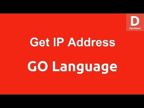 GO Programming Get IP of Website