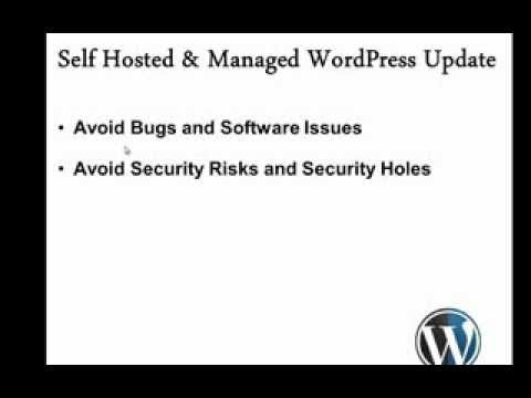 How to Update Wordpress Automatically Without Pain And Why it is Important?