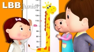 Measuring Your Height Song | How Tall Are You? | Original Songs | By LBB Junior
