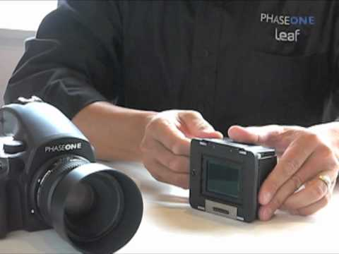 Bear Images presents, Medium Format Digital Sensor Cleaning How To