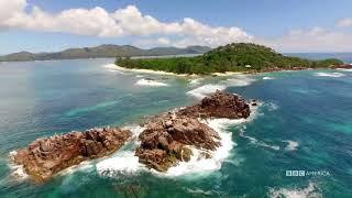 Visual Soundscapes - Islands   Planet Earth II   BBC America
