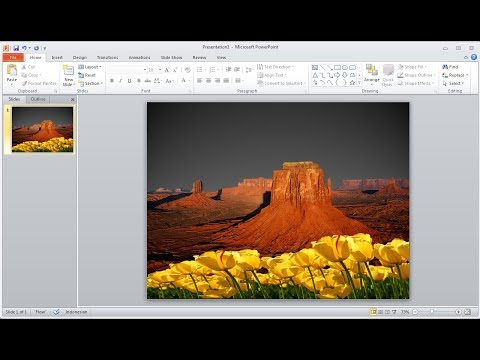 Powerpoint training |How to Remove your own Image Background in powerpoint