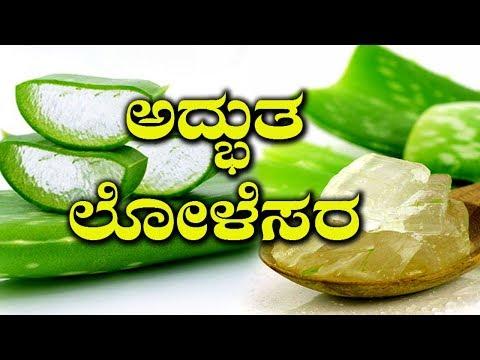 Real Reason For Use Of Aloe Vera In Medicines | ಪೂರ್ವಜರು ಲೋಳೆಸರವನ್ನು ಬಳಸುತ್ತಿದ್ದದ್ದಕ್ಕೆ ಕಾರಣ