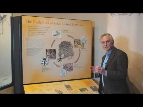 Richard Dawkins : Ants That Farm, Compost and Weed - Nebraska Vignettes #4