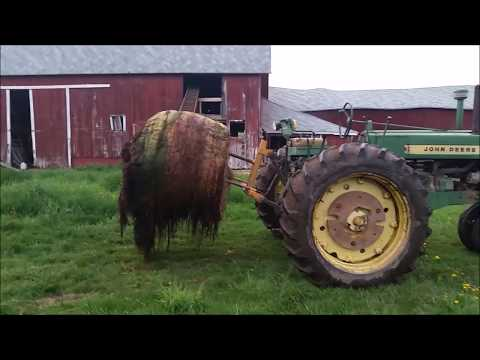 Spring hay field