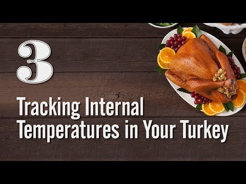 Turkey Tips - Tracking Internal Temperatures in Your Turkey