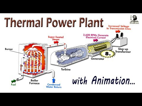 How does steam based Thermal Power Plant works ?