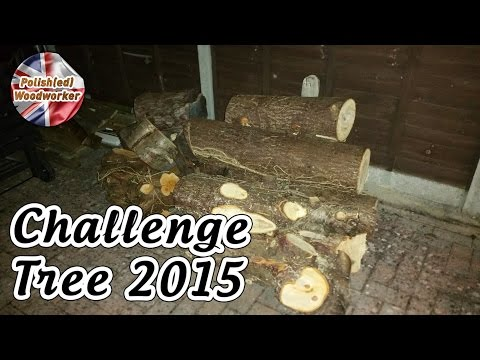 Make something from a Log or branch - Challenge Tree 2015 Project